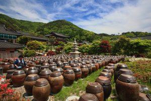 Zuid Korea vakantie